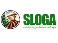 Import_Agents - sloga_slovenia
